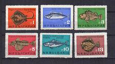 poisson 1965 Bulgarie 6 timbres non oblitérés sans gomme sans charnière /T4237