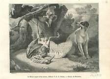 Chien de chasse & héron nature morte tableau de Jean-Baptiste Oudry GRAVURE 1851
