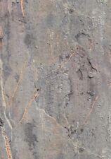 Klebefolie Naturstein Greek Stone - Möbelfolie 45 X 200 Cm Dekorfolie