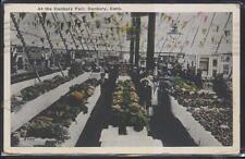 POSTCARD DANBURY CONNECTICUT/CT FAIRGROUNDS GARDENING PRODUCE TENT DISPLAY 1910s