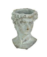 Michelangelo's David Bust Distressed Cement Indoor/Outdoor Head Planter