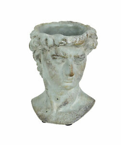 Michelangelo's David Bust Distressed Cement Indoor/Outdoor Head Planter
