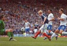 12 x 8 inch photo featuring & personally signed by Steven Naismith, of Scotland.