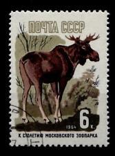 Elch, Moskauer Zoo. 1W. Gest. UdSSR 1964