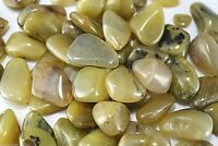 Olive Green Opal Tumbled Stone 30mm Qty1 Reiki Healing Crystals by Cisco Traders