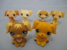 Littlest Pet Shop Lot 2 Random Golden Retriever Dog Accessory Lps