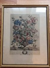 Hand Colored Engraving by Henry Fletcher, 12 Months of Flowers, April