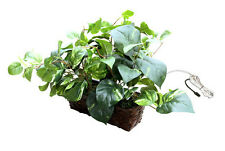 Fake Plant Wifi Hidden Surveillance/Security Camera Covert  Wireless System