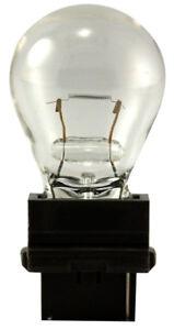 Back Up Light Bulb-Sedan Eiko 3156