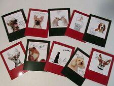 10 Christmas Cards & Envelopes Holiday Dog w/ Santa Hat Assorted Dogs & Doodles