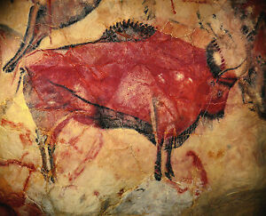 Cave Painting of a Bison From the Altamira Cave Wall Art Print Poster 15,000 BCE