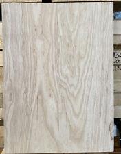 Southern White Swamp Ash Guitar 🎸 2 Pc blank kiln dried 19 x 14 x  1.78 Strat