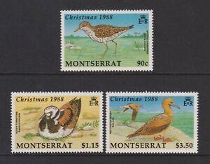 Montserrat - 1988, Weihnachten, Sea Vögel Set - MNH - Sg 778/80