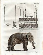 1797 PRINT ~ ELECTRICITY ~ EXPERIMENT EQUIPMENT ~ ELEPHANT ELEPHAS