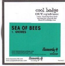 (BW919) Sea of Bees, Gnomes - 2011 DJ CD