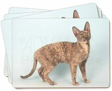Cornish Rex Cat Picture Placemats in Gift Box, AC-39P