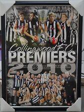 COLLINGWOOD MAGPIES 2010 AFL PREMIERS PRINT FRAMED - PENDLEBURY, SWAN