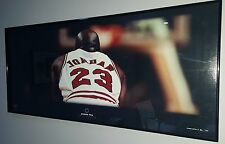 Greatness in Focus Collection Michael Jordan Panoramic Framed Picture Limited 35