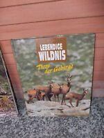 Lebendige Wildnis: Tiere der Gebirge, aus dem Verlag Das Beste Readers Digest