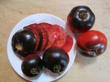 Indigo apple tomato - 10+ seeds - INTERESTING RARITY!