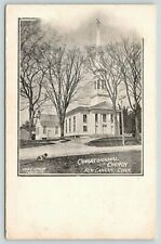 New Canaan Connecticut~Congregationa l Church~Dog Rests on Lawn~1905 B&W Pc