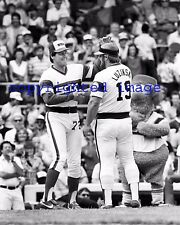 Carlton Fisk + Greg Luzinski   White Sox 1983 Comiskey Park  B+W 8x10 B