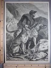 Rare Antique Original Vtg Scotch Deerhounds Dogs Engraving Art Print