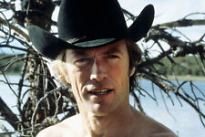 Clint Eastwood As Philo Beddoe In Any Which Way You Can 11x17 Mini Poster