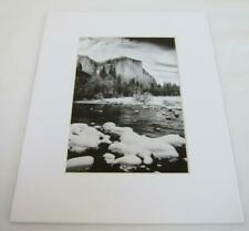 "Black /& White /""Over the trees snow peak mountains/"" 5 X 7 picture."