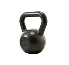 Proiron 12kg Cast Iron Kettlebell 26.5lb Hand Weight for Home Gym Training