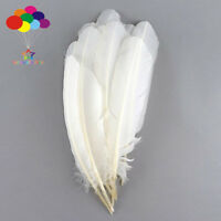 100 pcs white Turkey Quills by Wing feathers 28-33 CM/11-13 Inch Diy Carnival