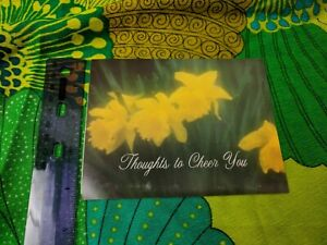 Greeting Card Unused Thoughts to Cheer You Yellow Daffodils
