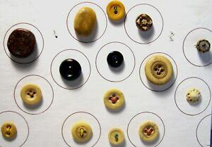 Card of 15 Antique Buttons Made of Natural Materials, Bovine Bone, Ginko Tree