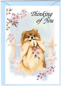 "Pomeranian Dog (4""x 6"") Thinking of You Card (blank inside) by Starprint"