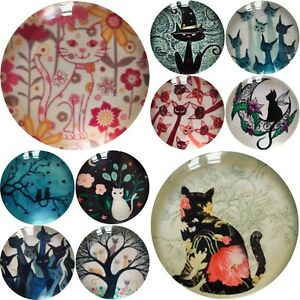 Cat Magnet Fridge Gift Cat Lover Birthday Handmade Kitten Kitchen Decor New (TF)
