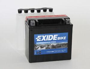 Bateria EXIDE YTX14-BS BMW Activada