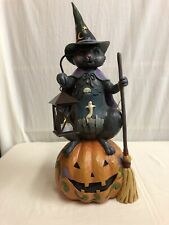 Enesco Jim Shore Cat On Pumpkin With Lighted Lantern Item 6005917 Halloween
