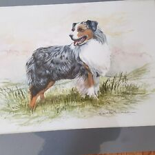 Original Watercolor by Martha Van Loan of Australian Shepherd