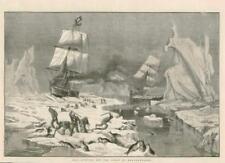 1881 antica stampa-Terranova Canada ICEBERG LA CACCIA (179)