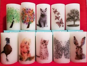 Picture Art Pillar Candle- Kitten, Squirrel, Butterfly, Flower - Great Gift Idea