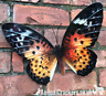 Large 35cm bright Orange metal Butterfly garden ornament wall art decoration
