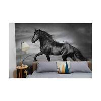 Original wall deco Mural sticker CUSTOM bedroom inspiration Horse black