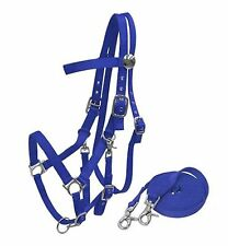 BLUE Horse Size Nylon Combination Halter Bridle With 7' Reins! NEW HORSE TACK!