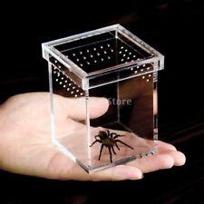 Tarantula Acrylic Cage Breeding Habitat Lizard Snake Amphibian Frog Spider Box