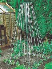 Parasene Outdoor Garden Gro-Pole Grow Rod Frame - Support for Growing Beans Peas