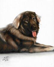 @ Original Oil Portrait Painting Sarplaninac Puppy Dog Artist Signed Artwork