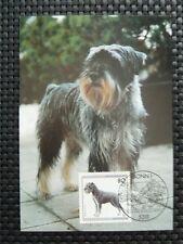 BUND MK HUND SCHNAUTZER DOG DOGS MAXIMUMKARTE CARTE MAXIMUM CARD MC CM c4783
