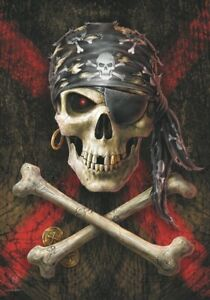 Anne Stokes Pirate Skull Grand Tissu Affiche/Drapeau 1100mm x 700mm (Hr )