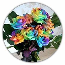 Regenbogen Rose / Einhornrose / Bunte Rose / 50 Samen / Rosensamen