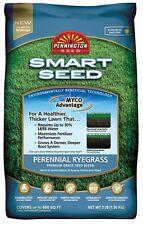 Pennington 100526658 Smart Seed Perennial Ryegrass Seed Blend, 3 Lb